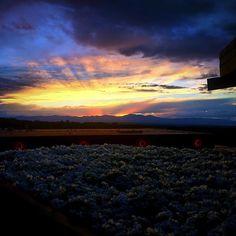 A beautiful #SantaFeNM sunset! #MayaRoseDesigns #Sunset #SantaFeOpera #Photography #SantaFe #NewMexicoTRUE