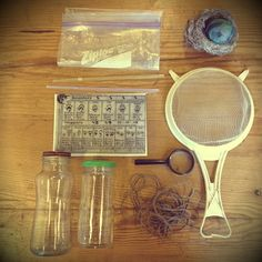 Pieces to make your own nature kit