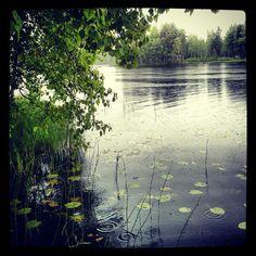 Sataa
