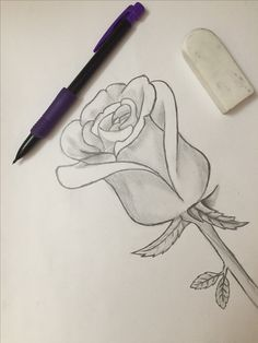 Roses are red 🌹 Credit: Cathy Yue Ig: @thegirlwhoplaystheflute Twitter: @itsmoicathy Pinterest: @cathy_kaixi2000 Red Roses, My Arts, Twitter, Drawings, Sketch, Portrait, Drawing, Resim, Paintings