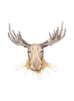 """Norsk elg"" (Norwegian moose)  Copyright: Emmeselle.no   illustration by Mona Stenseth Larsen"