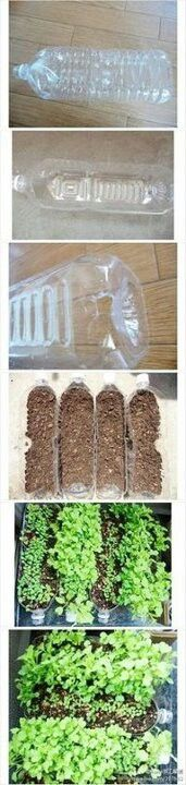 recycled bottle gardening #recycled #gardening #DIY