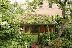 tuinhuis met groendak / *nota C: boven garage en boven slaapkamer? Earth Sheltered Homes, Living Roofs, Living Walls, Shed Cabin, Garden Cabins, Underground Homes, Garden Studio, Shed Design, Building Exterior