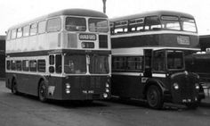 Bus Coach, Busses, Transportation