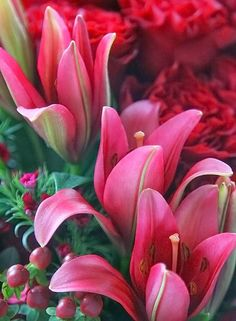 Lilies. My Favorite!