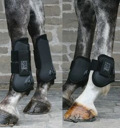 Shedrow Jumper Boot Horse Package. The Shedrow Jumper Boot package includes the Shedrow Open front and ankle boots at a conveniently low price. This boot package is perfect for any rider looking for a fantastic front and back boot combination to wear during daily exercise and competition. www.greenhawk.com