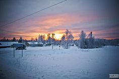 Winter scene (Finland) by Panu