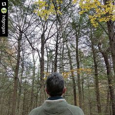 Today is the first day of the Wild Photo Challenge.  Here's a photo by @hdgrogan  Me in the Wild. :) #WildPhotoChallenge Day 1 #trees #woods #outdoors #massachusetts  Want to join us for this fun challenge? Sign up at the link in our bio ( http://ift.tt/1M5dCiT ) to get the list of suggested photos.  Happy wild photo capturing!  #nature #wearewildness #photography #naturephotography #photooftheday