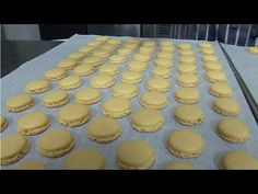 Complete Video Tutorial on How to Bake French Macarons with No Hollows - YouTube
