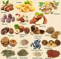 Types of nuts. -           Chesapeake College Adult Ed. offers free classes on the Eastern Shore of MD to help you earn your GED - H.S. Diploma or Learn English (ESL) .   For GED classes contact Danielle Thomas 410-829-6043 dthomas@chesapeke.edu  For ESL classes  contact Karen Luceti - 410-443-1163  Kluceti@chesapeake.edu .  www.chesapeake.edu