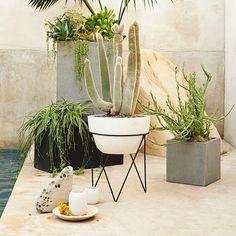 Iris Planter + Chevron Stand | west elm