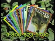 The magical combination of wild animals and magazines: | 50 Pictures That Perfectly Sum Up Your Childhood