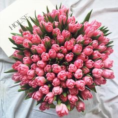 dont kill the flowers growing inside of you for someone who doesnt appreciate the way you bloom May Flowers, Beautiful Flowers, Tulips Flowers, Bouquet Flowers, Bouquets, Bouquet Cadeau, Tulips Images, Bloom, Plants Are Friends