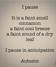 Samhain, Mabon, Fall Inspiration, Lexa Y Clarke, Autumn Scenes, Autumn Aesthetic, Happy Fall Y'all, Hello Autumn, Fall Harvest
