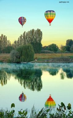 Beautiful Picture Of Hot Air Balloons With Reflection
