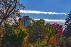 Autumn in Oak Park Illinois USA | November 3 2016