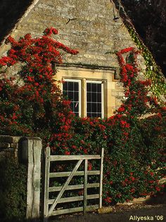 Lower Slaughter cottage, Cotswolds Just the way I remember it!