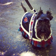 Out & about in a kilt - awwww...mack would not be happy with this one..but...omg too cute