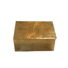Stamped Crocodile Brass Box