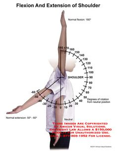 amicus,anatomy,range,motion,shoulder,flexion,extension,shoulder,degrees,rotation,neutral,position,