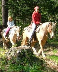 Horse back riding. own horses and ride with the kids