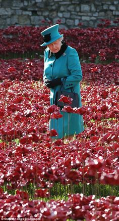With almost all of the 888,246 poppies now in place, the Queen was rendered almost invisible as she walked through the sea of ceramic crimson blooms during a tour of the Blood Swept Lands and Seas of Red installation at the Tower of London this morning.
