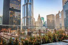 Top Chicago Rooftops - Where to find panoramic views of downtown for free - My Ticklefeet Rooftop Chicago, Chicago River, Chicago Vacation, Buckingham Fountain, Chicago Skyline, Rooftops, Aerial View, Nice View, Travel Guide