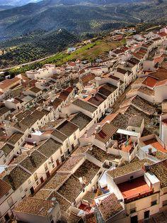Vista del pueblo de Olvera (Cádiz) desde su castillo. Sight of the Olvera village (Cadiz) from his castle.