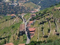 Porto / Régua / Porto - Descida ao fim de semana - Porto-wellcome : Momentos de prazer e emoções vividas até ao limite...