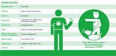 The Rehabilitation of Marijuana