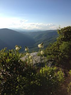 Tablerock Mt. in Linville Gorge
