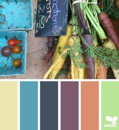 Market hues  (1-6)