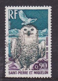 Owl postage stamp, Saint Pierre et Miquelon.