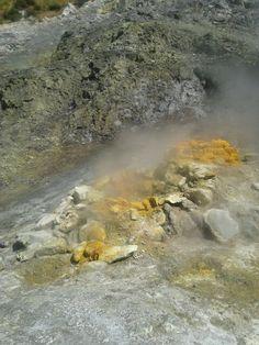 Vulcano Solfatara, Pozzuoli Amalfi Coast, Geology, Nonfiction, Volcanoes, Non Fiction