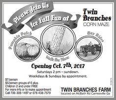 Please Join Us For Fall Fun, Carnesville Georgia   Twin Branches Farm-Carnesville,Georgia #georgia #LavoniaGA #shoplocal #localGA