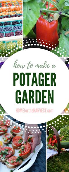 Finally starting our potager! We are going to make a french kitchen garden this year. I can't wait to have our own edible garden full of delicious vegetables and herbs! #potager #ediblegarden #kitchengarden #organicgarden Vegetables For Babies, Organic Vegetables, Growing Vegetables, Potager Garden, Garden Pests, Greenhouse Gardening, Balcony Garden, Organic Insecticide, Organic Pesticides