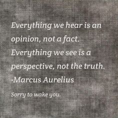 Everything we hear is an opinion, not a fact. Everything we see is a perspective not the truth. (marcus aurelius)
