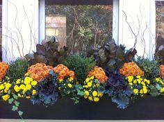 Subtle window box arrangement for Fall....#gardening #coopersmithandson