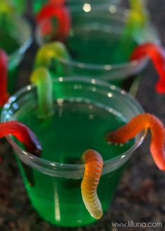 Gummy Worm Jello Cups, a creepy, creative and yummy treat perfect for Halloween. Comida De Halloween Ideas, Easy Halloween Snacks, Halloween Games For Kids, Halloween Desserts, Halloween Costume Ideas For Adults, Halloween Jello Shots, Halloween Finger Foods, Homemade Halloween Decorations, Halloween Cupcakes