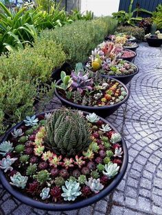 67 Beautiful And Easy Fairy Garden Ideas For Kids That You Must See fairygarden fairygardenideas fairygardenforkids ⋆ newportinternationalgroup com is part of Succulent landscaping - Large Backyard Landscaping, Succulent Landscaping, Succulent Gardening, Succulent Pots, Planting Succulents, Garden Planters, Landscaping Ideas, Organic Gardening, Indoor Garden
