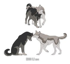 Snk Wolves - Jean And Marco by Nicicia.deviantart.com on @deviantART