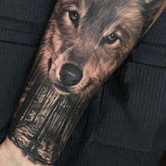 Double exposure wolf tattoo on the inner forearm.