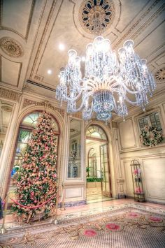 The Plaza, New York Christmas. Where I spent my 50th birthday.