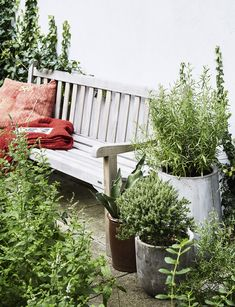De 9 bedste billeder fra Garden Life   Sæsoner, Hygge og Haver