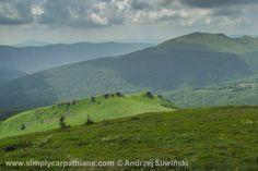 Woodless ridges of the Bieszczady Mountains. #bieszczad #poland  www.simplycarpathians.com