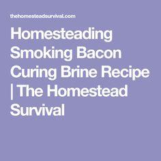 Homesteading Smoking Bacon Curing Brine Recipe | The Homestead Survival