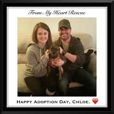 #Please ❤️+ #PIN #FromMyHeartRescue #SavingOneDogAtaTime ~ #Happy #Adoption #Day #Chloe ❤️  Thank you for your support.❤️ *Info, Foster, Adoption, e-transfer & PayPal: frommyheartrescue@hotmail.com    *Our Vets: Brock St. Animal Hospital/FMHR 905-430-2644   *Fundraising & Volunteering: FMHRfundraising@hotmail.com     *Gift Basket Donations: FMHRgifts@hotmail.com   ~www.frommyheartrescue.com        *Find us on Petfinder, Youtube, FB, Twitter, Instagram & Google+