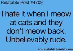hahahahaha.....yes.