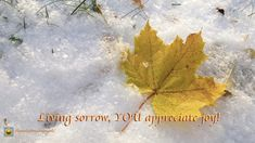 Living Sorrow Your story has sorrow and has joy, and they are both temporary. Living sorrow, YOU appreciate joy, for darkness makes you love the light! PHOTO CREDIT: PIXABAY With Love, Manuela Appreciation, Make It Yourself, Love, World, Art, Amor, Art Background, Kunst, The World