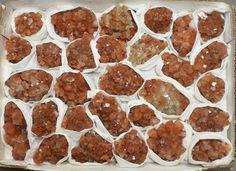 29 Pc Aragonite Specimen Flat Tazouta, Sefrou Province, Fès-Boulemane, Morocco
